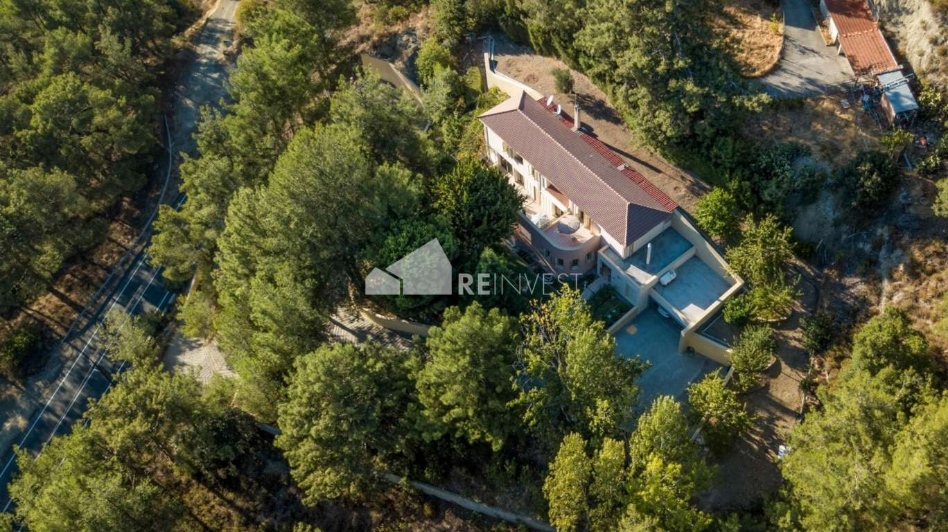 Secluded Villa in the Forest – Video Tour